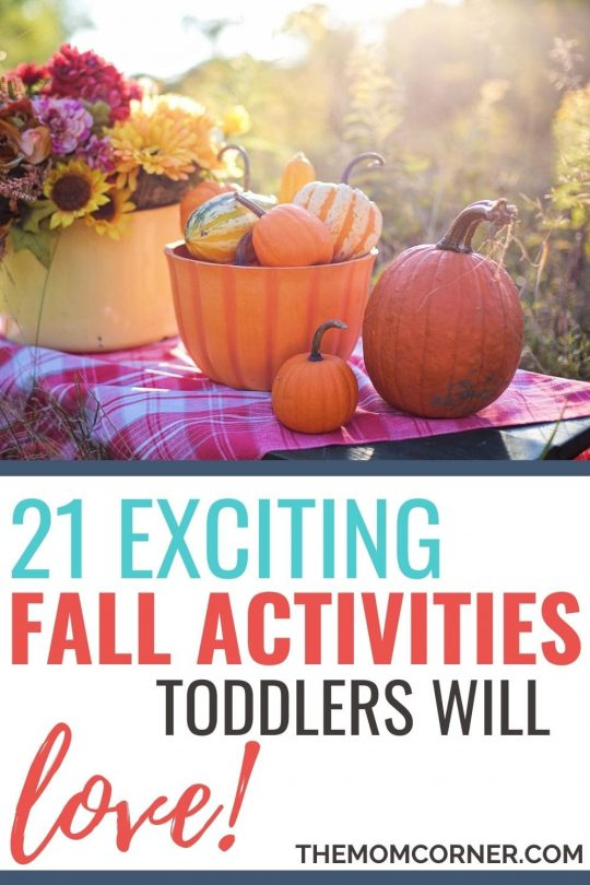 21 exciting fall activities for toddlers. These activities will get you and your toddler outdoors and enjoying the autumn weather. Whether you need a simply activity for the backyard or a more elaborate fall outing, these ideas will get you started.