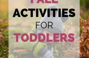 Outdoor Fall Activities for Toddlers. Wondering what to do with outside with your toddler this fall? Try these ideas for outdoor fun with your toddler.
