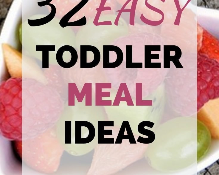 Easy, Healthy Toddler Meal Ideas