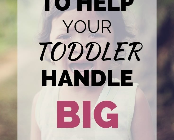 Tips To Help Your Toddler Handle Big Emotions