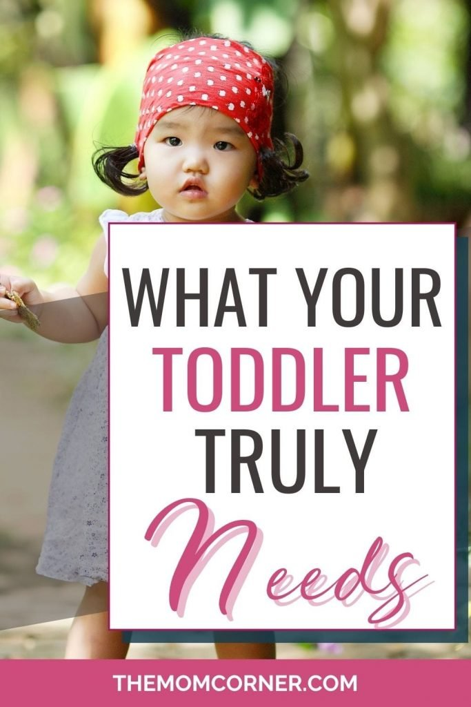 Wonder what your toddler truly needs? Honestly, the things toddlers need are a lot simpler than we tend to think. And despite the importance of this one simple thing, so many toddlers go without this important and valuable thing in their lives.