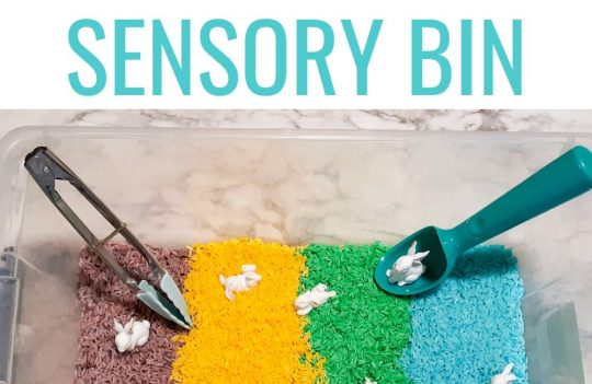 How To Make An Easy Easter Sensory Bin For Toddlers. Whether for preschool or just for fun, this sensory bin is full of great ideas for your toddlers.